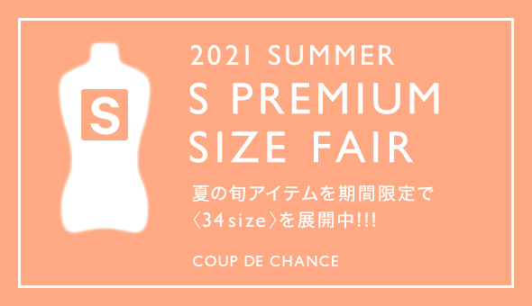 21summer Ssize FAIR