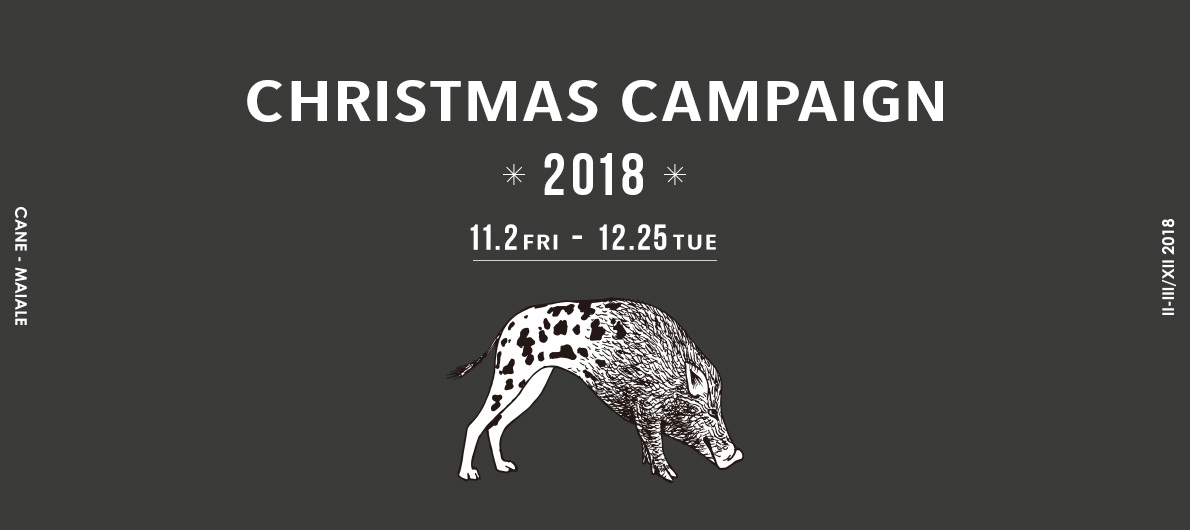 CHRISTMAS CAMPAIGN 2018