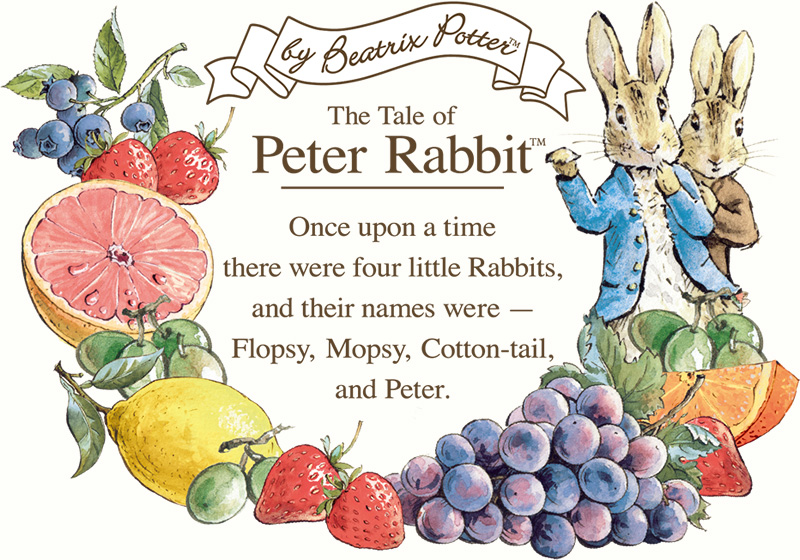 UNTITLED × PETER RABBIT